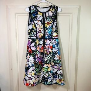 Spense Floral Fit & Flare Sleeveless Dress Sz 6
